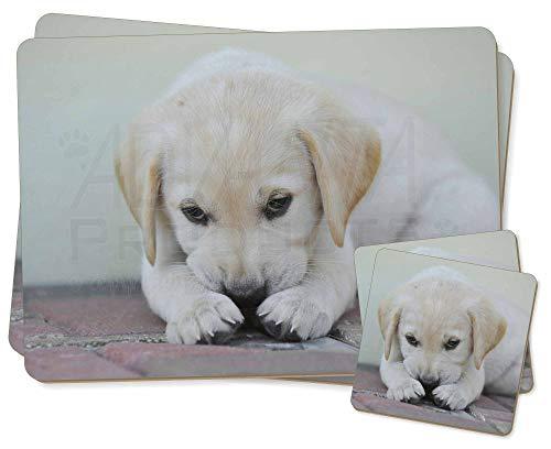 Advanta - Coaster and Placemat Set Creme Labrador Welpe Twin 2x Platzsets + 2x Untersetzer in Geschenkbox -