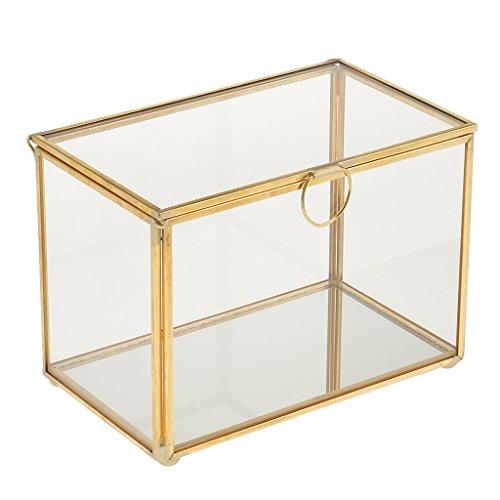 MagiDeal Gold Kupfer Messing Tischplatte Geometrische Form Sukkulenten Glas Terrarium Pflanztopf...