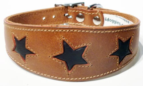 4doggies 17-21 Inch Tan with Brown Stars Leather Whippet Greyhound Collar