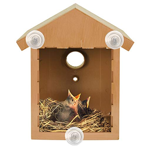 ASAB Wildvogel Beobachtungsset Vogelhaus Set Vogelhaus Set mit Spion Fenster und Einweg Spiegelfolie Kunststoff Rotkehlchen Haus mit Holzoptik