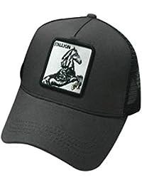 JOYKK Parejas Gorra de béisbol Animales Parche Bordado Hip Hop Malla  Patchwork Ajustable Snapback Trucker Hat 4b08216746c