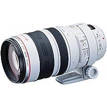 Canon EF 100-400mm  f/4.5-5.6 L IS USM Objektiv (77 mm Filtergewinde)
