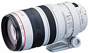 Canon EF 100-400mm  f/4.5-5.6 L IS USM Objektiv (77 mm Filtergewinde)