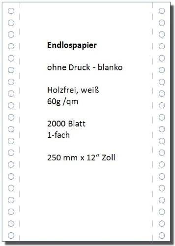 B&B Endlospapier DIN-Computerpapier Tabellierpapier 12 Zoll x 250 mm (A4 hoch), 60 g, 2000 Blatt LP, 1fach