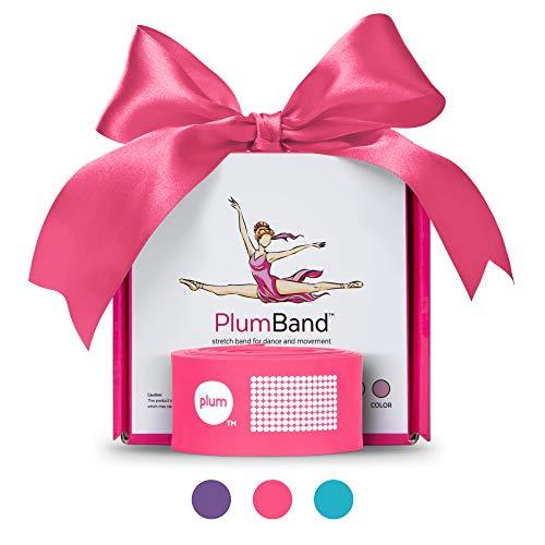 PlumBand - Banda Elastica per Danza E Ginnastica - Elastico da Allenamento per Ballerine - Fascia Elasticizzata in Varie Misure - con Borsa E Libretto D'Istruzioni in Inglese (Rosa, Piccola)