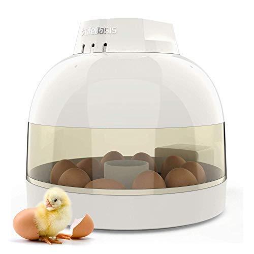 LifeBasis Eier Brutkasten, Automatischer Eier Brutkasten für 10 Eier, Kleine Geflügel Schlupfwinkel, Automatische Temperatur & Luftfeuchtigkeits Kontrolle für Hühner Enten Gänse und Vögel MEHRWEG