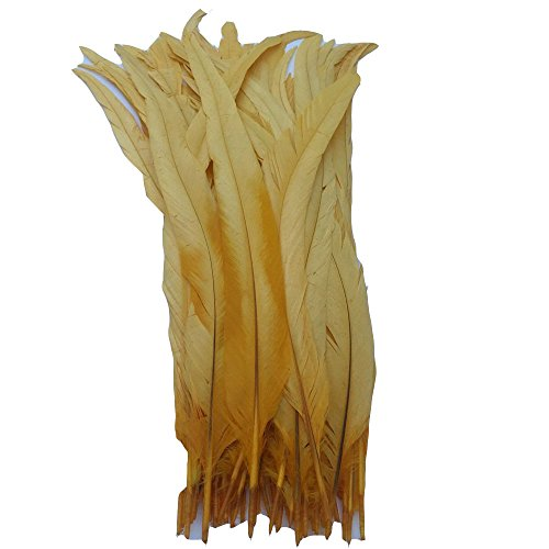 Kolight Set mit 1000 Stück, 30,5-35,6 cm, natürliche Hahnenfedern, für Heimwerker, Hochzeit, Party, Büro, Dekoration goldgelb -