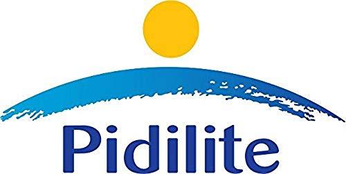 Pidilite M-Seal Epoxy Compound (Putty) 1Kg