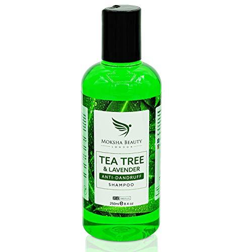Shampoo Antiforfora Uomo e Donna Arricchito con Tea Tree Oil Puro 100% - Olio Essenziale dell'Albero del Tè Olio di Lavanda - Shampoo Tea Tree Antiforfora Contro Prurito Secchezza Irritazioni Pidocchi
