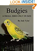 #10: Budgies A Small Bird Only In Size