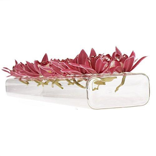 Chive-hudson 61cm/60cm rettangolare unico vetro vaso elegante, basso laying vaso in vetro trasparente con 24fori per fiori, oprah s favourite thing
