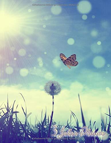 3 Jahre Planer: Tages- und Monatsplaner ab Mai 2019 bis Dezember 2021 - Großes Format - Schmetterlinge -