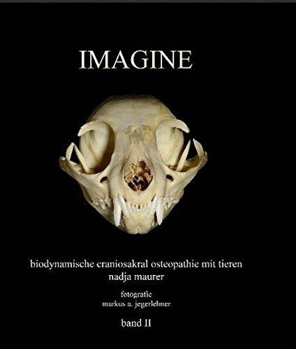 IMAGINE band 2: biodynamische craniosakral osteopathie mit tieren