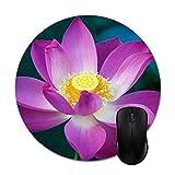 Lotus Natur Pflanzen Blumen Rosa Teichpflanzen Mauspads Stilvolle Büroaccessoires (8 'Rund)
