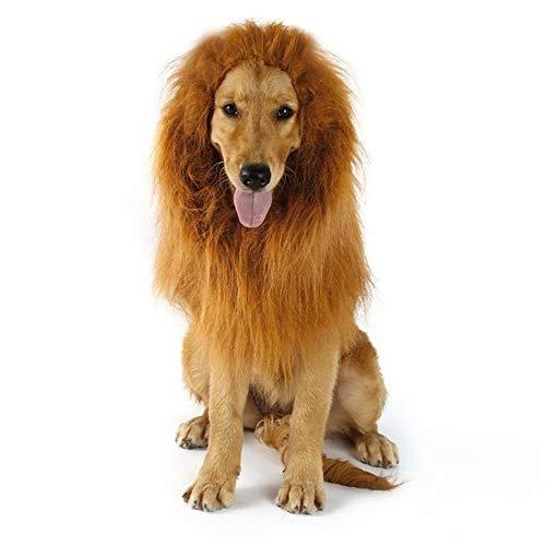 Tanz Kostüm Regenmantel - BYFWA Haustierkostüm,Löwenkopfbedeckung, auffällige Katzenmütze, Führstrick mit Engelsrücken, Klettverschluss, verstellbares Design, geeignet für kleine Hunde oder Katzen, 3 in 1,A