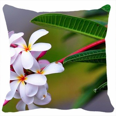 Custom Pillowcases Home Decor Design Flowers plumerias Flower Diy Pillow Cases Cover Throw Size Personalized 16inchX16inch