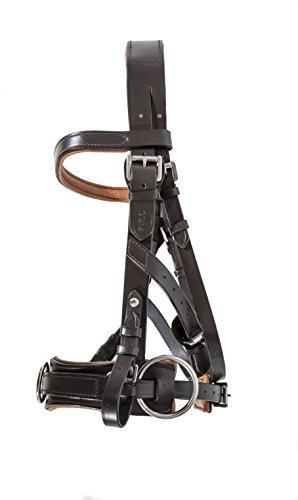 Swiss Horse Kappzaum braun/Hellbraun - Vollblut/Cob extra weiches Leder