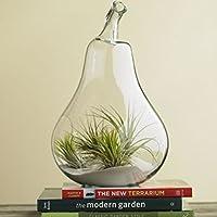 Vaso Vetro A Forma Di Pera Porta Fiore Piante Decorazioni Casa Giardino, Appendibile, Misura 14 x 9