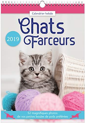Download Calendrier hebdo Chats farceurs 2019