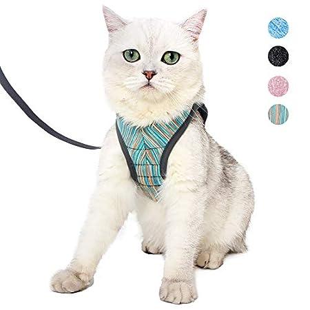 Set aus Katzengeschirr und Leine mit ultraleichtem Kätzchenhalsband, weich und bequem, Laufjacke, Laufdämpfung…