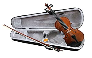 RayGar Natural Violin Beginner Student Pack Package Outfit With Case, Bow and Rosin - New