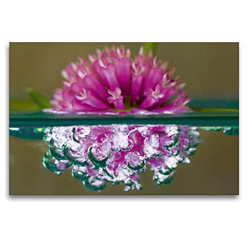 Calvendo Premium Textil-Leinwand 120 cm x 80 cm quer Bubble World - Pflanzen unter Wasser - Wiesen-Klee, Venetien | Wandbild, Bild auf Keilrahmen, Fertigbild auf echter Leinwand, Leinwanddruck