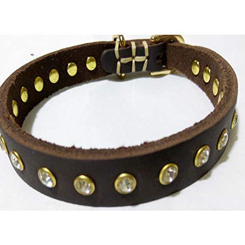 LIPETLI Hundehalsband Hochwertiges Echtleder Trainingshalsband mit Glatter und Empfindlicher Oberfläche Geeignet für Kleine Hunde (Hund Foto-verzierung)