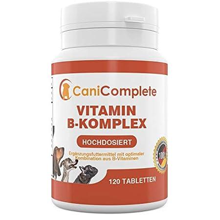 CaniComplete Vitamin B-Komplex für Hunde, Katzen: B1, B2, B3, B5, B6, B9, B12, K3, Calcium, Folsäure. Unterstützt…