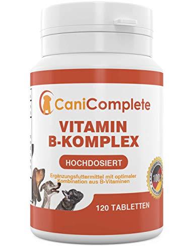 CaniComplete Vitamin B-Komplex für Hunde, Katzen: B1, B2, B3, B5, B6, B9, B12, K3, Calcium, Folsäure. Unterstützt wichtige Nervenfunktionen.120 Stück (4 Monatspackung) -
