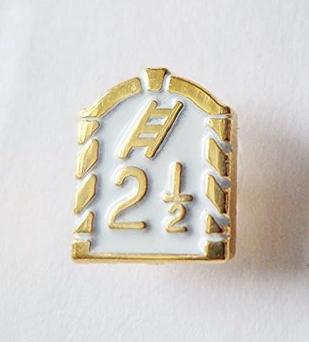 Royal Arch 2 1/2 Tribes With Ladder White Orange Order Pin Badge - K096