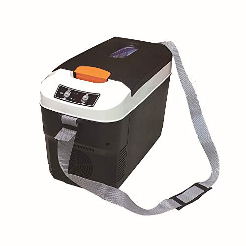 Portátil Eléctrico Caja fría 10L Mini Congelador