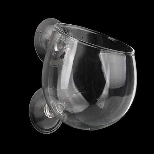 Geggur Glas Cup Topf Mit 2 X SaugnäPfe FüR Aquarium Pflanzschale Glas Deko Plant Pot FüR Aquarium Seitenwand Fisch Tank Ha -
