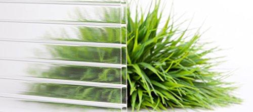 Stegplatte | Hohlkammerplatte | Doppelstegplatte | Material Acrylglas | Breite 980 mm | Stärke 16 mm | Farbe Glasklar