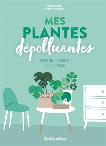 Mes plantes dépolluantes