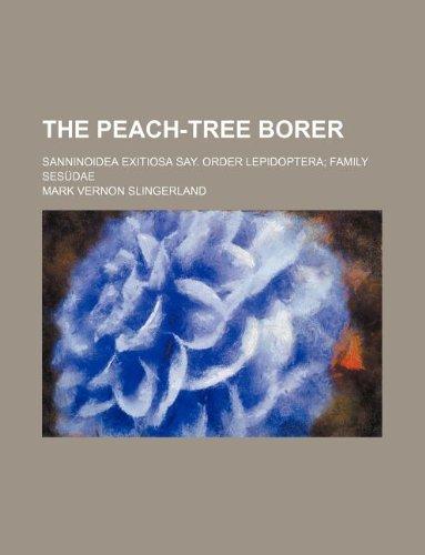 The Peach-Tree Borer; Sanninoidea Exitiosa Say. Order Lepidoptera; Family Sesudae (Peach Borer)