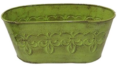 Robert Allen Home & Garden mpt01897Fleur de Lis Oval Übertopf, 25,4cm Tansy grün