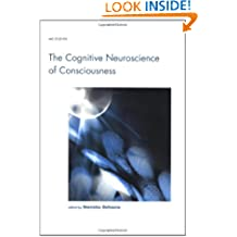 The Cognitive Neuroscience of Consciousness (Cognition Special Issue)