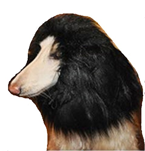 Tier-Hund Perücke Kostüm Löwe Mähne lustig Löwenkopf (Keine (Hund Ballon Kostüm)