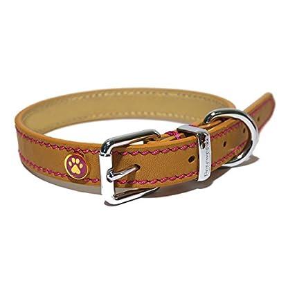 Rosewood Luxury Leather Dog Collar, Tan, Samml 10 - 14 inch 3