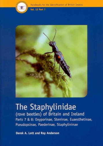 The Staphylinidae (Rove Beetles) of Britain and Ireland: Oxyporinae, Steninae, Euaesthetinae, Pseudopsinae, Paederinae, Staphylininae Part 7 and 8 (Handbooks for the Identification of British Insects)