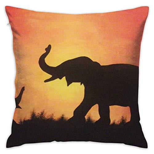 RVNIERYM - Funda de cojín decorativa con diseño de elefantes de sol,...