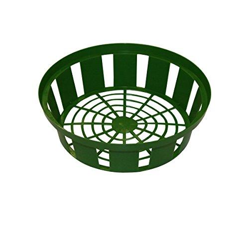Xclou Blumenzwiebel-Pflanzschale in Grün, Zwiebel-Pflanzkorb aus Kunststoff mit 31 cm Durchmesser im 3er Set, Pflanzschalen für Blumenzwiebeln, 3 Pflanzkörbe für Zwiebeln für den Garten