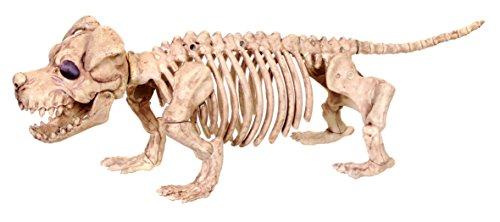 Crazy Bonez Skelett Hund–Puppy (Prop Skelett Halloween Hund)