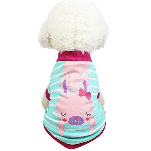 Ropa para Mascotas,Dragon868 Perro Ropa Perro Camisetas Mascotas Ropa para Perros