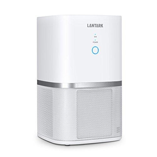 LANTARK 5 in 1 Luftreiniger mit HEPA Filter Luftreiniger Filtration für Allergien, Haustiere, Raucher, eliminiert Staub, Schimmelpilzsporen, Gerüche, Blütenstaub, Bakterie, Haustiere Schuppen