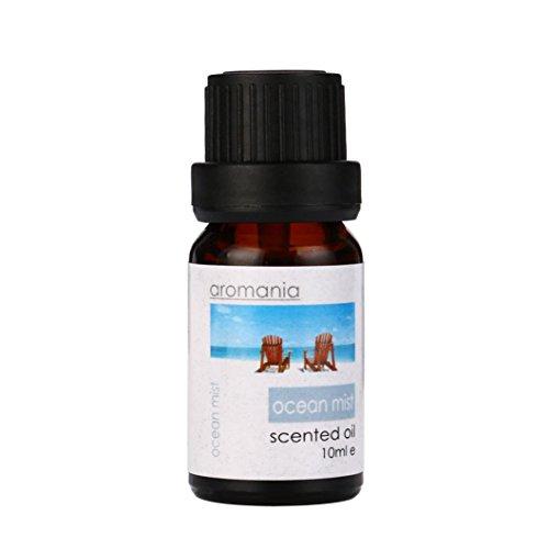 Diffuser luftbefeuchter Aromatherapie Ätherische Öle,jaminy 10ml 100% Reine & NatÜRliche Ätherische Öle Aromatherapie Duft Hautpflege Ätherische Öle Duftöle Aromaöl (C-Aroma) (Chanel Wohnungen)