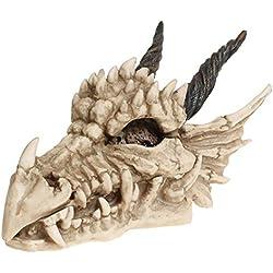 Nemesis Now Dragon - Caja con Forma de Calavera (15 cm, 23 cm), Color Marfil