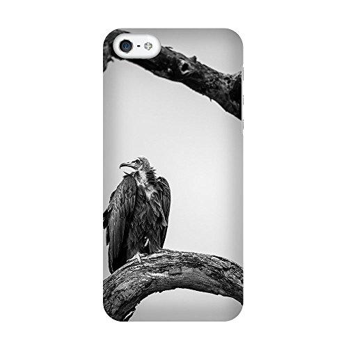 iPhone 5/5S Coque photo - Comme des vautours