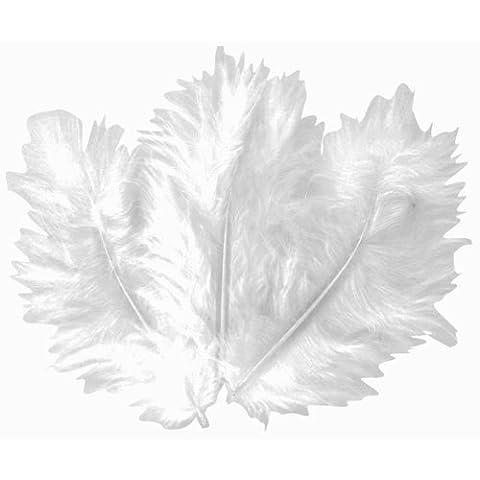 Plume Blanche - CTOP - Loisir créatif - Plumes blanches