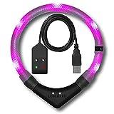 Leuchtie LED Leuchthalsband Premium Easy Charge lila im weißen Gewebeschlauch Größe 37,5 USB Akku LED Halsband für Hunde